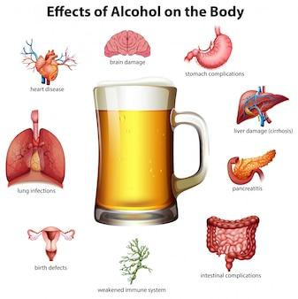 Effecten van alcohol op het lichaam