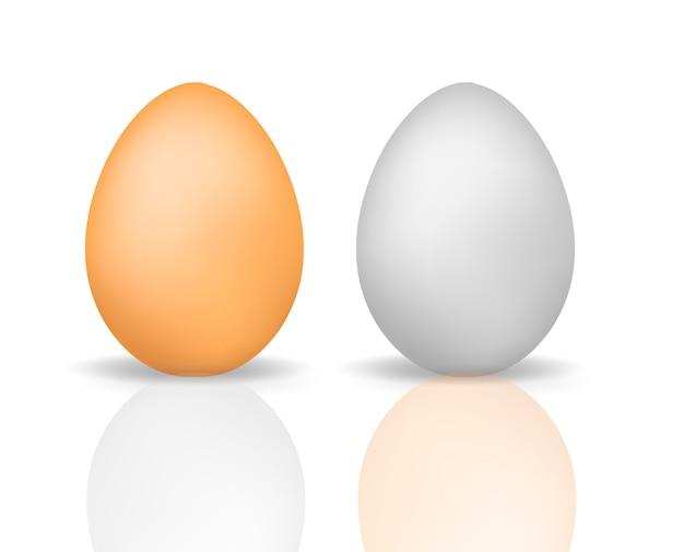 Eieren realistische 3d-stijl met reflectie. eierschaalkip op een witte achtergrond wordt geïsoleerd die. illustratie