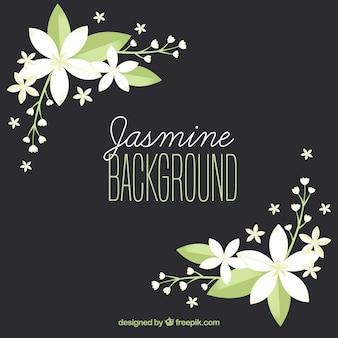 Elegante achtergrond met platte jasmijn