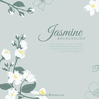 Elegante jasmijnachtergrond met vlak ontwerp