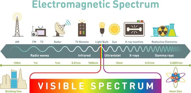 Elektromagnetisch spectrum infographic diagram