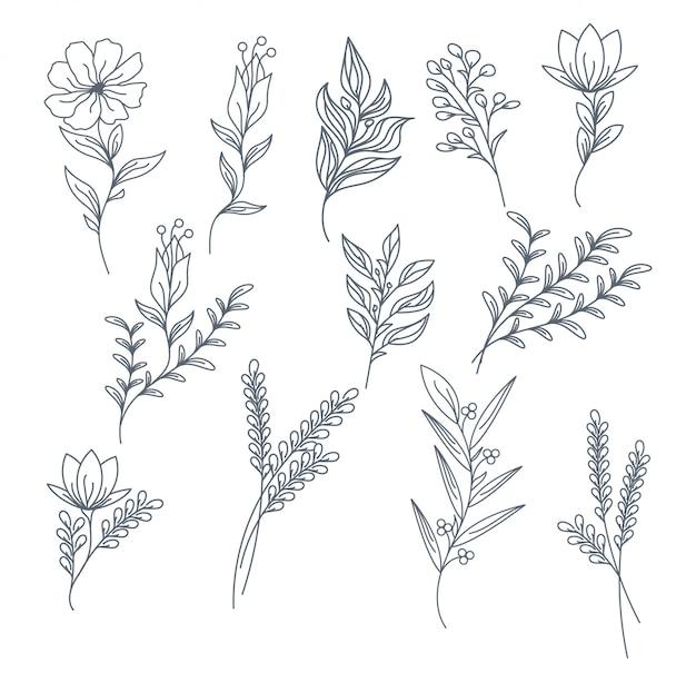 Elementen hand getrokken bloemen collectie