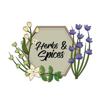 Embleem kruiden en specerijen planten en orgelvoer