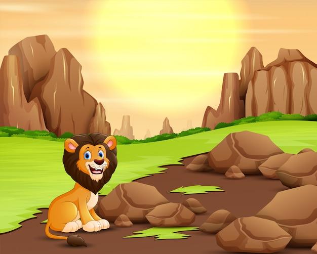 Enge leeuw in de aard bij zonsondergangachtergrond