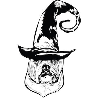 Engelse bulldog-hond in heksenhoed voor halloween