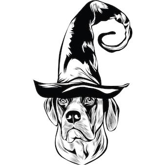 Engelse mastiff-hond met heksenhoed voor halloween
