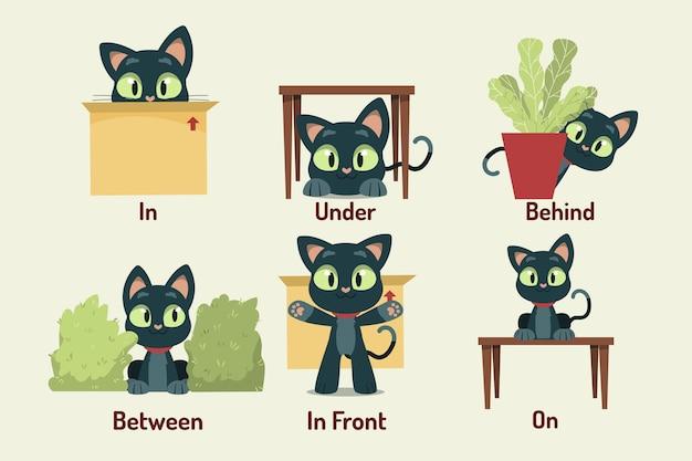 Engelse voorzetsels met kat
