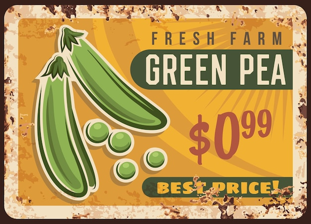 Erwt groene metalen plaat roestig, plantaardige bonen poster retro