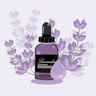 Essentiële olie van lavendel