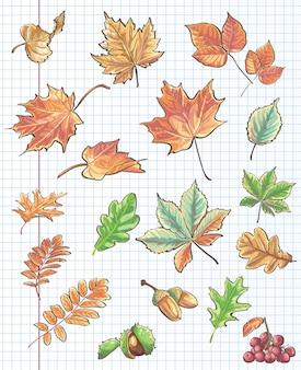 Et van herfstbladeren, kastanjes, eikels en viburnum op een achtergrond van notebookblad in een kooi