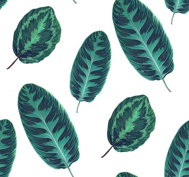 Exotisch naadloos patroon met bladeren van tropische jungleplanten