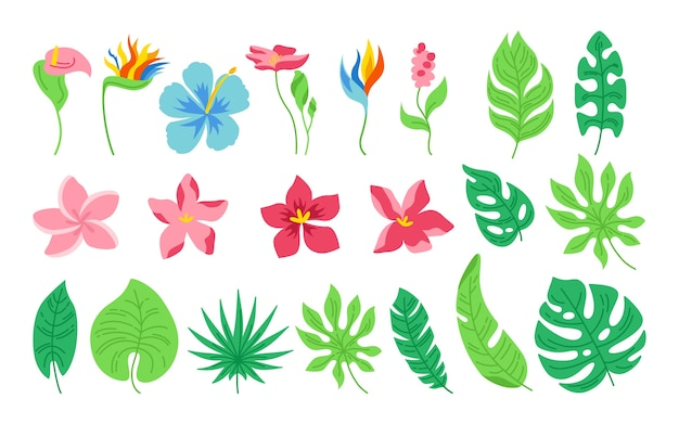 Exotische bladeren en bloemen cartoon set. tropische abstracte bloemen platte planten. monstera, palm en wilde bloemen collectie. hawaiiaanse hand getekend groene jungle. op witte achtergrond