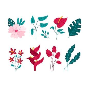 Exotische bloemen met bladeren die op witte achtergrond worden geïsoleerd