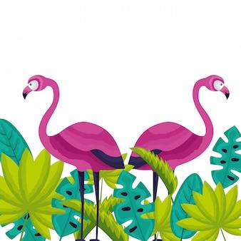 Exotische flamingo's vogel verlaat tropische