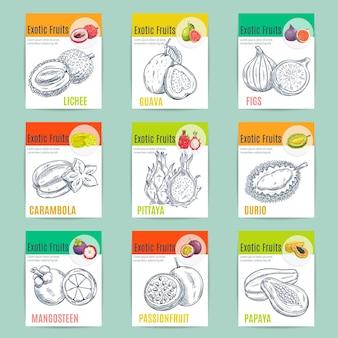 Exotische fruitverpakkingen. vector potloodschets lychee, guave, vijgen, carambola, drakenfruit, pitaya, durian, mangosteen passievrucht papaja