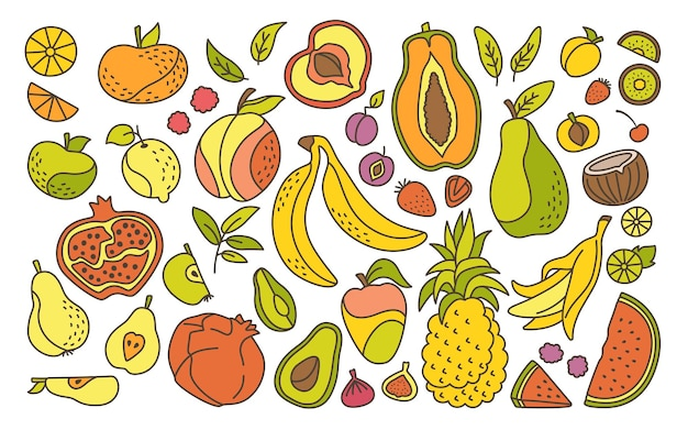 Exotische hawaiiaanse fruit cartoon lijn set, tropisch fruit, ananas, bramen peer, watermeloen en mandarijn.