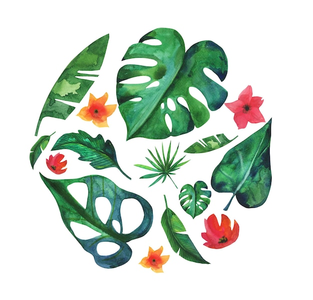 Exotische plant cirkelvorm met bananenblad, plumeria, hibiscus, monstera hand getekend in aquarel.