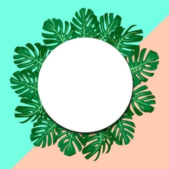 Exotische tropische groene bladerenmonstera. papieren banner.