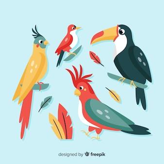 Exotische vogel collectie vlakke stijl