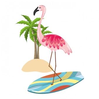 Exotische vogel en zomer