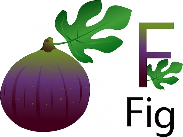 F-lettertype met afb