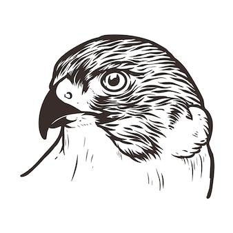 Falcon head bird tattoo illustratie