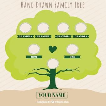 Fantastische met de hand getekende stamboom