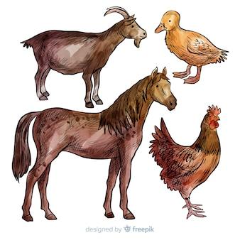 Farm animal collectio