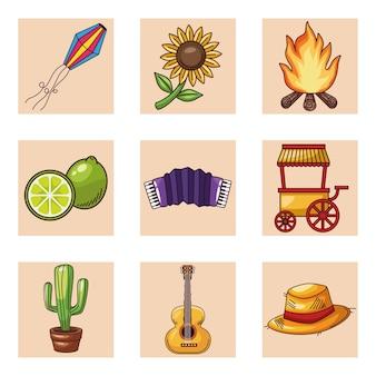 Festa junina elementen set