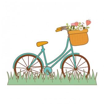 Fiets met mand en bloemen in het landschap