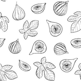 Fig illustratie. naadloze patroon. hand getrokken schets.