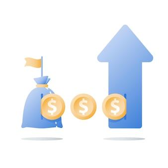 Financieel investeringsfonds, omzetstijging, inkomensgroei, illustratie van het budgetplan