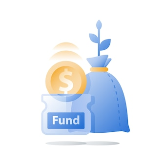 Financiële investeringen, fondsenwerving, omzetstijging, inkomensgroei, budgetplan, rendement op investering, langetermijnstrategie, vermogensbeheer