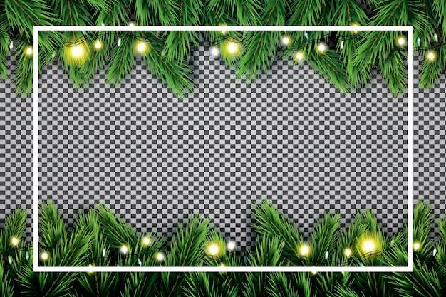 Fir tak met neonlichten en wit frame op transparante achtergrond.