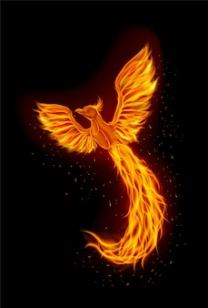 Fire phoenix mascotte logo ontwerp