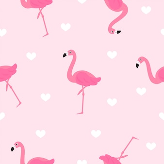 Flamingo naadloze patroon vector.