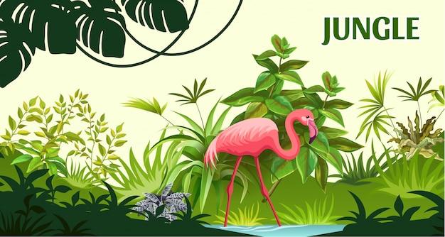 Flamingo op de jungle van bomen.