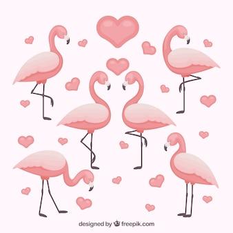 Flamingo's collectie met verschillende poses in vlakke stijl