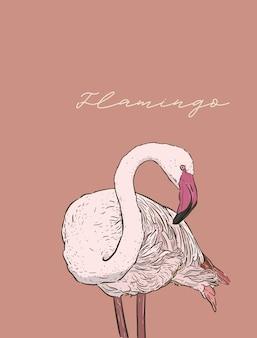 Flamingo vector illustratie. lijntekeningen, stijl graveren. schets artwork