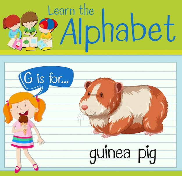 Flashcard letter g is voor cavia