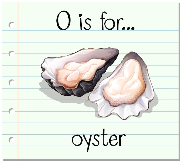 Flashcard letter o is voor oester