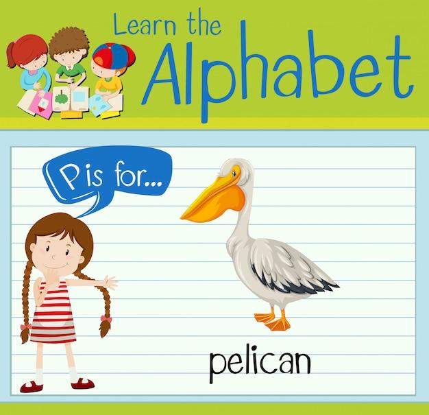 Flashcardletter p is voor pelikaan