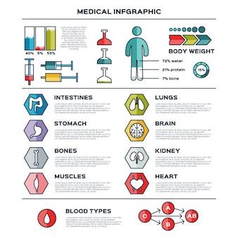 Flat medische infographic