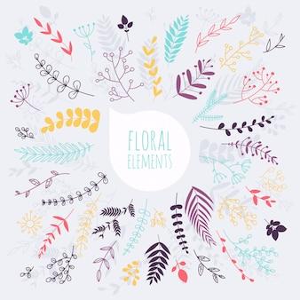 Floral elementen. hand getekend