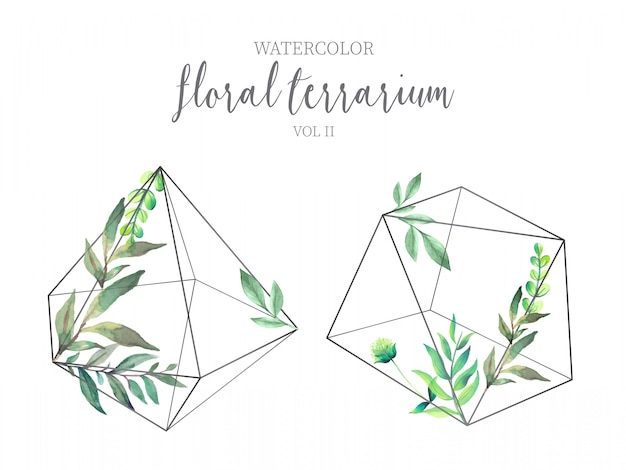 Floral terrarium met groene bladeren vol