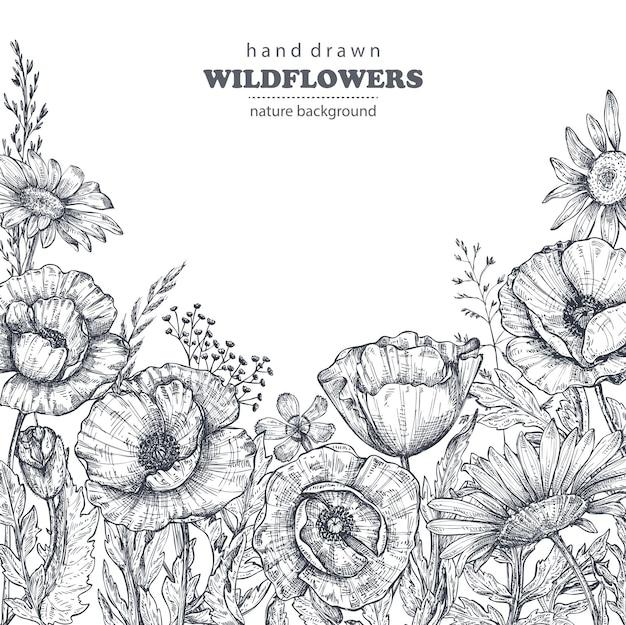 Florale achtergrond met handgetekende papaver en andere bloemen en planten. monochroom vectorillustratie in schets stijl.