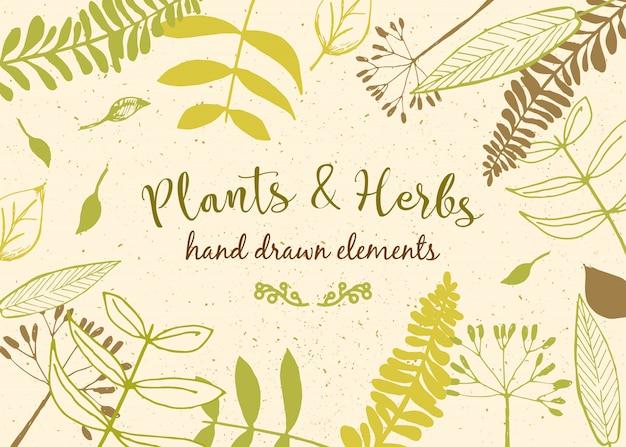 Florale achtergrond. vintage uitnodiging met verschillende bladeren. botanische illustratie.