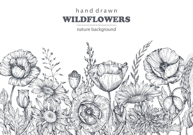 Florale achtergronden met handgetekende papaver en andere bloemen en planten. monochroom vectorillustratie in schets stijl.