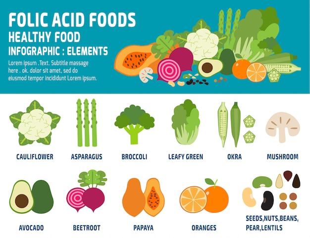Foliumzuur voedingsmiddelen infographic vector illustratie geïsoleerd