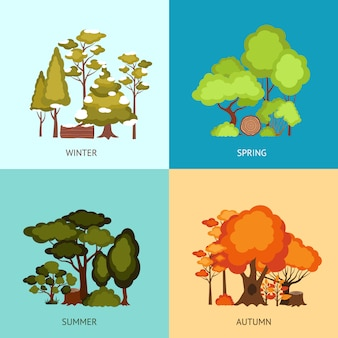 Forest design concept